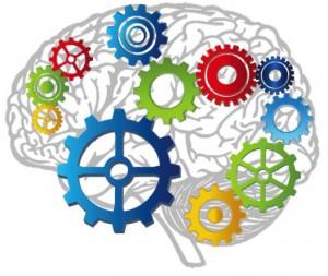 Диагностика мозга